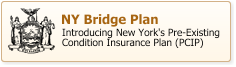 New York Bridge Plan